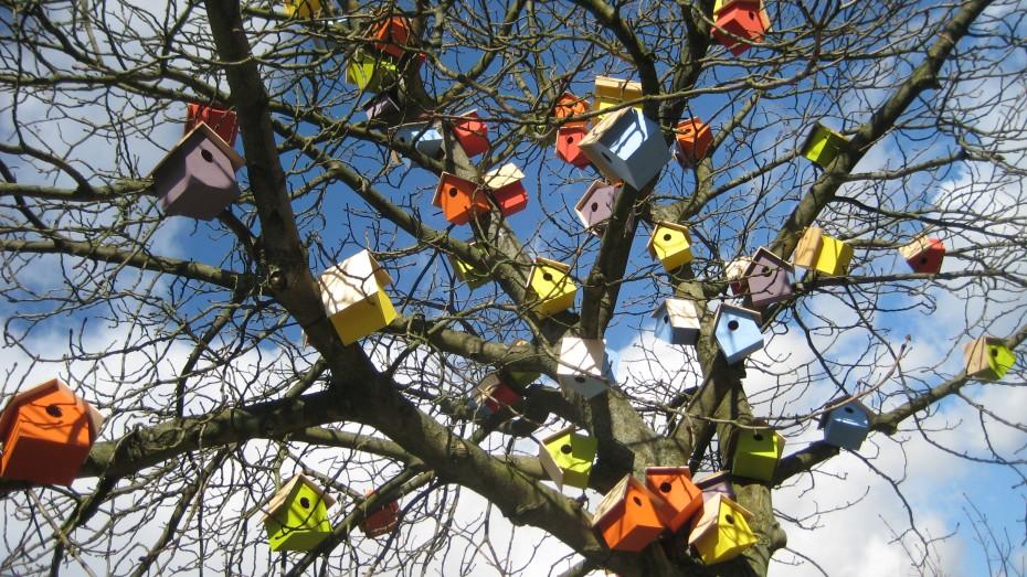tree with many birdhouses