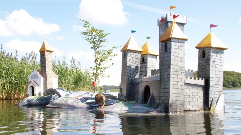Giant birdhouse castle for ducks and birds